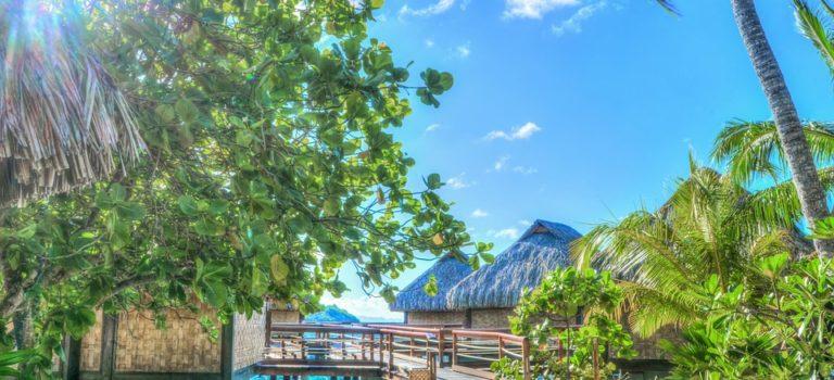 Les activités à faire pour profiter des merveilles de la Polynésie française