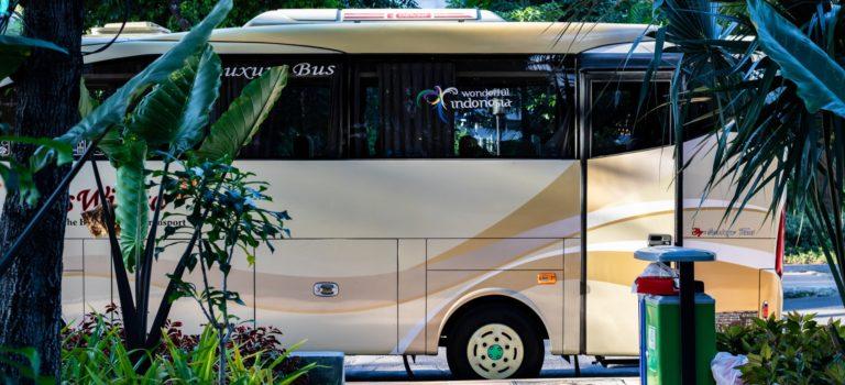 Top des conseils pour trouver le meilleur bus à louer